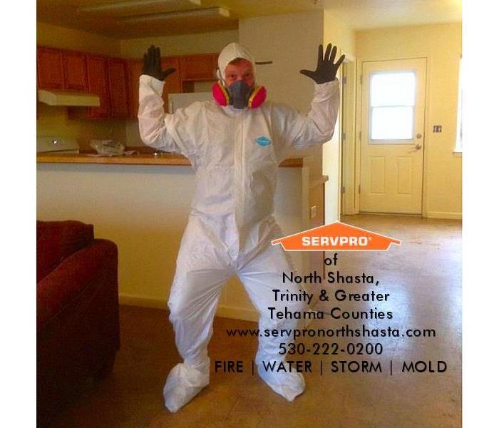 Redding Mold Removal