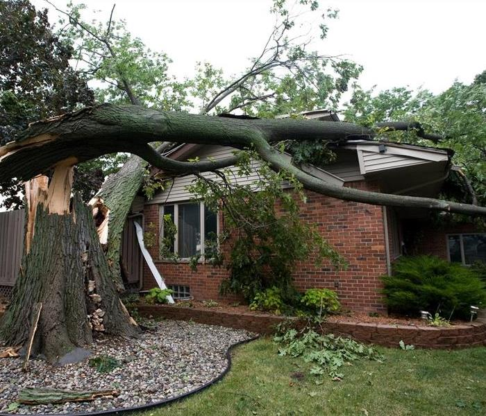 Storm Damage - Tree Falls on Roof