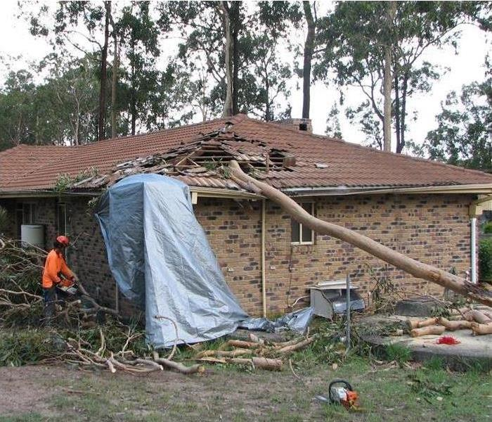 Storm Damage Homeowners: Professional Storm Damage Tree Work