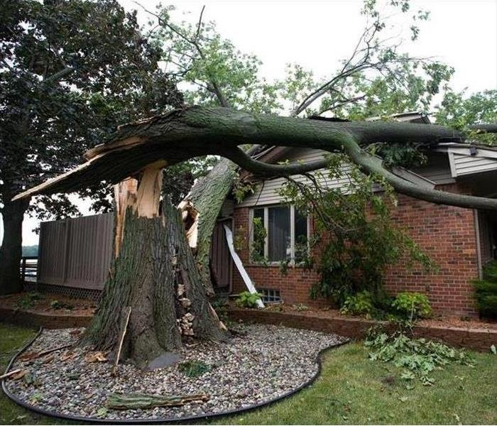 Storm Damage Redding / Shasta County California Homeowners: Professional Storm Damage Tree Work