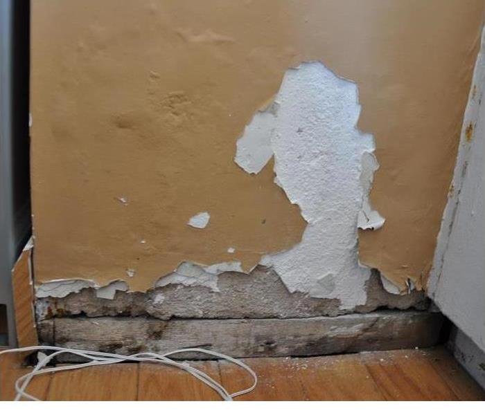 Water Damage SERVPRO of North Shasta, Trinity & Greater Tehama Counties 24 Hour Emergency Water Damage Service